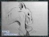 kandk_creature_sketch12