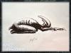 kandk_creature_sketch17