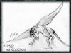 kandk_creature_sketch26